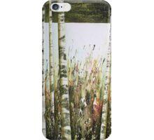 Silver Birches (New Beginning) iPhone Case/Skin