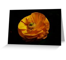 PS3-6-38075 Greeting Card