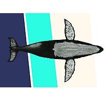 Gone Whale  Photographic Print