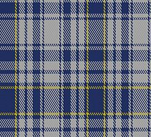 00675 The Spirit of Yorkshire District Tartan Fabric Print Iphone Case by Detnecs2013