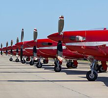 Roulettes in a Line by Bairdzpics