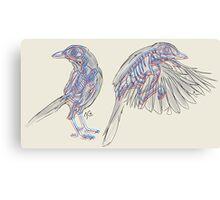 Western Scrub Jays Canvas Print