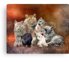 Young & Wild Canvas Print