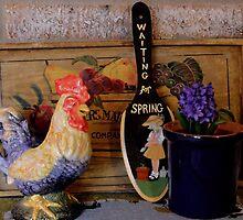 Country Kitchen by aprilann