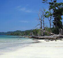 """The mesmerising beauty of Andaman"" # 1 by debjyotinayak"