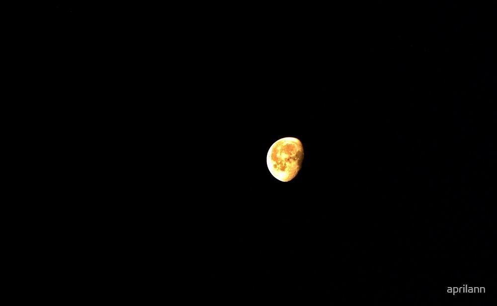 A Big Sherman, Texas Moon by aprilann