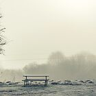 Bench in fog by Henrik Hansen