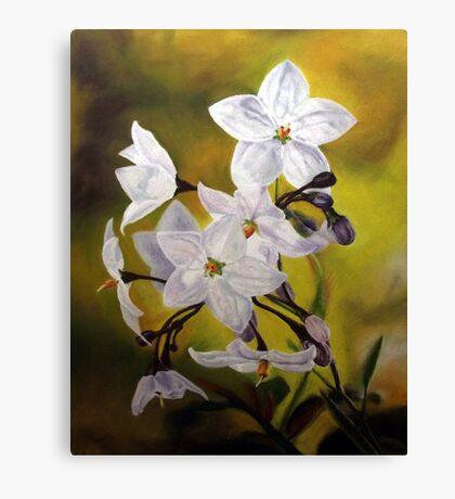 Star Jasmine Canvas Print