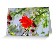 Pomegranite impressionism Greeting Card