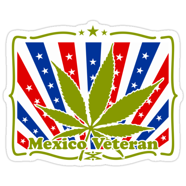 Mexico Veteran by vivendulies