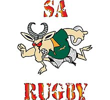 SPRINGBOK RUGBY SOUTH AFRICA  Photographic Print