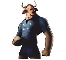 SOUTH AFRICA SEXY SUPER THE BULL RUGBY BLUE BULLS SUPORTER T SHIRT BRAAI BILTONG Photographic Print