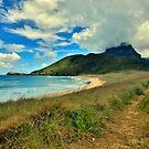 On The Beach... LHI by Peter Doré