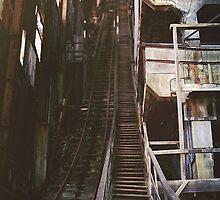 roller coaster by shoshgoodman
