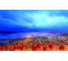 Poppies in the mist'... Photographic Print