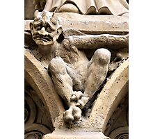 Notre Dame bestiary in Paris, France Photographic Print