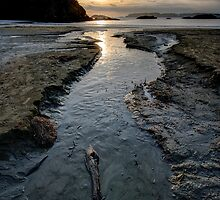 The Stream at McKenzie Beach by toby snelgrove  IPA