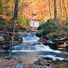 Fall Shadows Where Waters Meet by Gene Walls