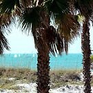 Clearwater Beach Sail Boats by Diane Trummer Sullivan
