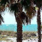 Clearwater Beach Sail Boats by kodakcameragirl