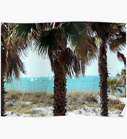 Clearwater Beach Sail Boats Poster