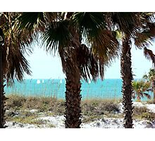 Clearwater Beach Sail Boats Photographic Print