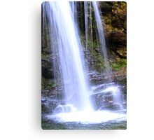 Grotto Falls in the Great Smoky Mountains Canvas Print
