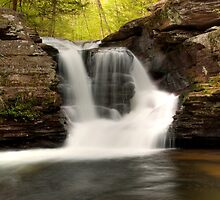 In The Refreshing Spray Of Murray Reynolds Falls by Gene Walls