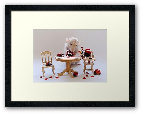The Ladybird collection by Ellen van Deelen