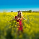 yellow field  by algazar