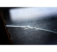 A window Photographic Print