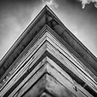 Asymmetry  by ricardowilliams