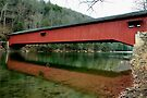 Loyalsock Reflections At The Restored Hillsgrove Covered Bridge by Gene Walls