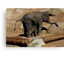 Elephant Mother and Son Canvas Print