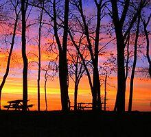 Sunset on the Beach by Heather  Andrews Kosinski