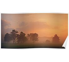 Foggy Morning on the Pond Poster