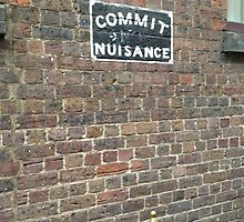 Commit Nuisance by Sorcha Whitehorse ©