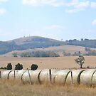 Hot Rural Landscape by Helen Greenwood