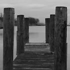 The Dock by RogerEchauri