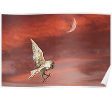 Nocturnal Hunter Poster