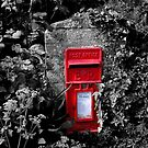 Cornish postbox by Rachel Down