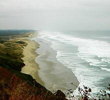 Oregon Waves by kchase