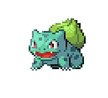 Pixel Bulbasaur Photographic Print