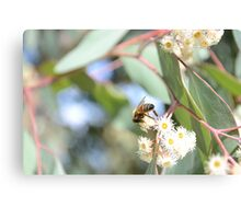 Bee Mindful Canvas Print