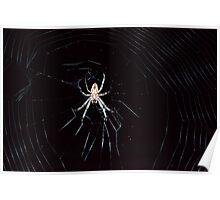 Midnight Web Poster