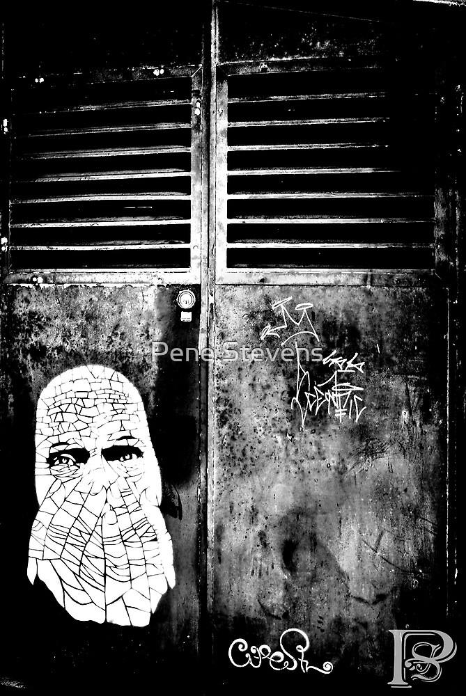 Graffiti 2  by Pene Stevens