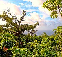 Grenada in all it's beauty by globeboater