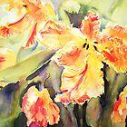Orange Parrots by Ruth S Harris