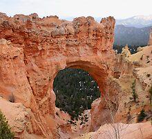 Natural Bridge,Bryce Canyon National Park,Utah by Anthony & Nancy  Leake