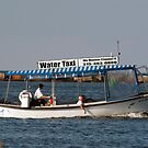 Water Taxi by wolftinz